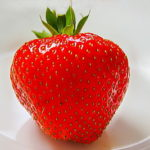 いちごの旬をいちご栽培の実践法則で!いちごスクール紹介!