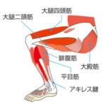 スクワットのやり方で膝の位置が気になる?つま先より前or後?